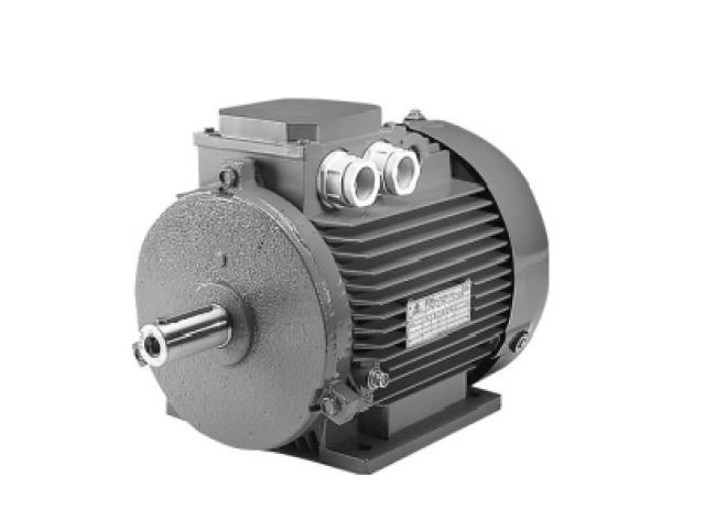 Трехфазный электродвигатель STM серия VELA